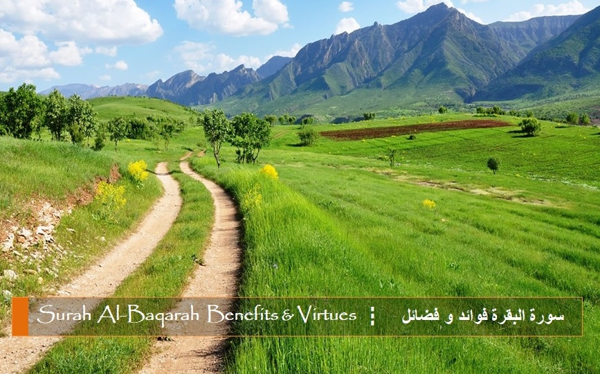 Benefits and Virtues of Surah 2 Al-Baqarah – ﴾ بسم الله