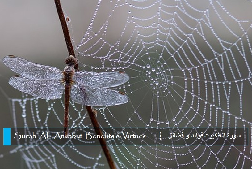 virtues-benefits-surah-al-ankabut