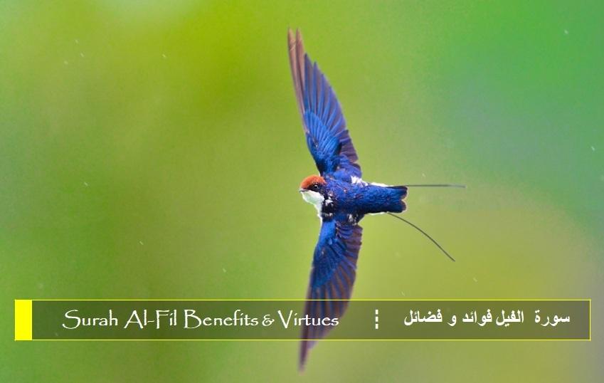 virtues-benefits-surah-al-feel