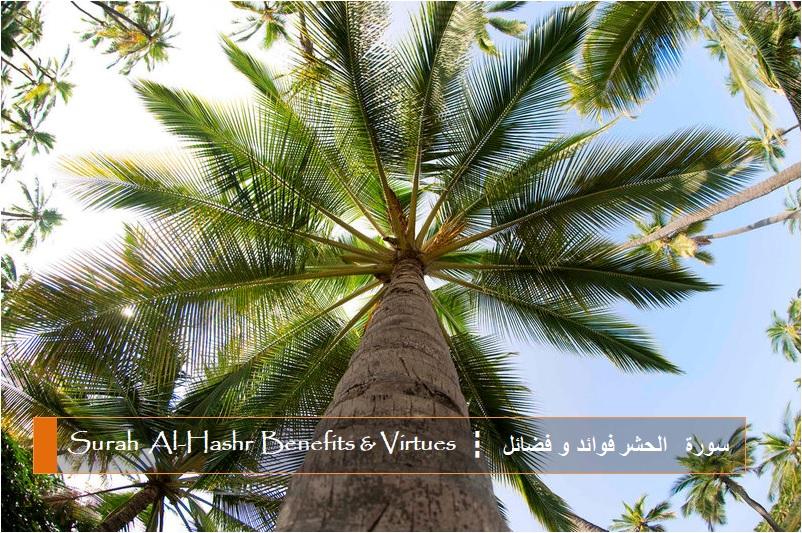 virtues-benefits-surah-al-hashr