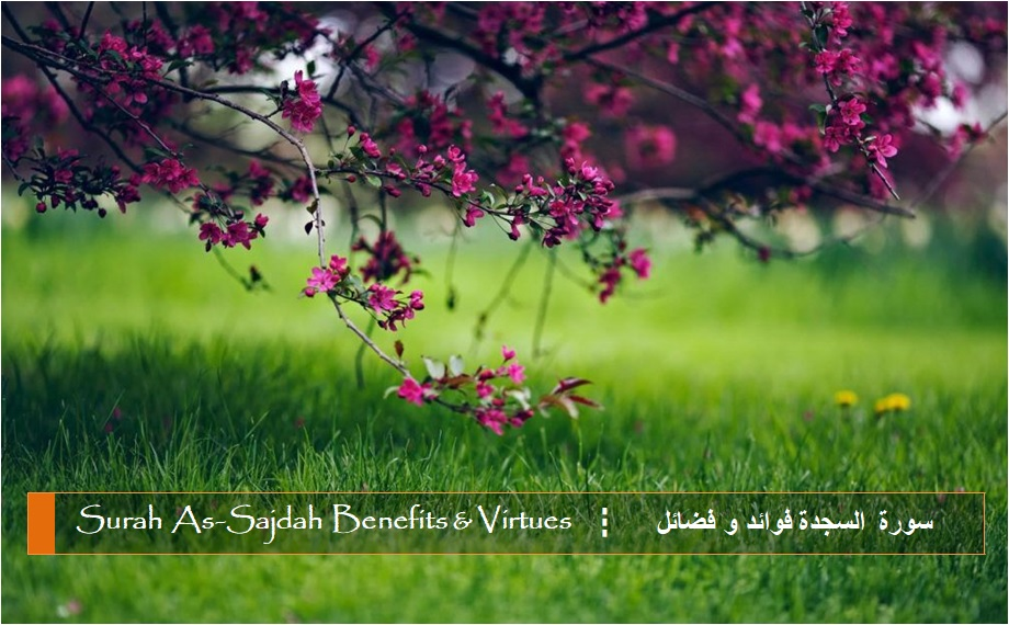 virtues-benefits-surah-as-sajdah