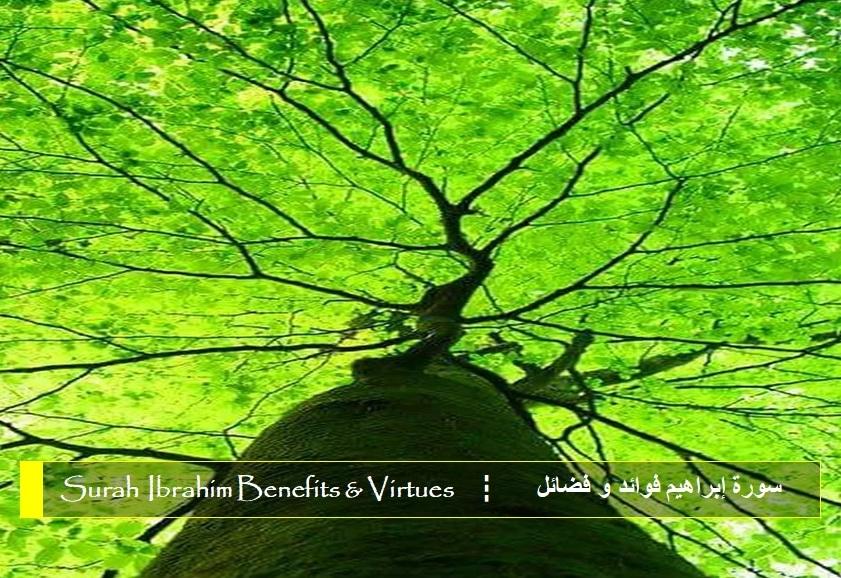 virtues-benefits-surah-ibrahim