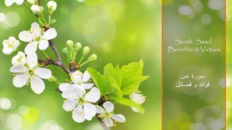virtues-benefits-surah-saad