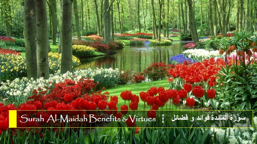 virtues-benefits-surah-al-maidah